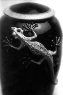 steven-smith-pottery-lizzard-pot